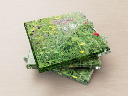 Wildflowers - Glass Coasters